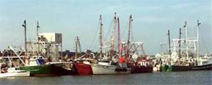 CapeMayboats